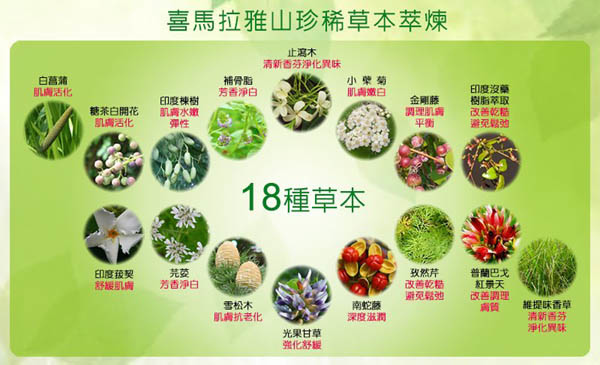 Medimix 阿育吠陀18種天然草本手工皂.jpg