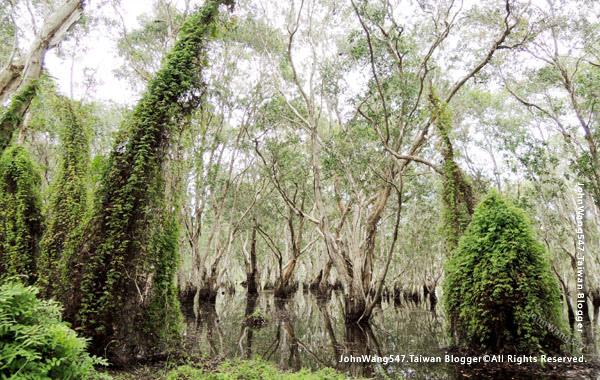Rayong Wetland sanctuary Samnak Yai.jpg