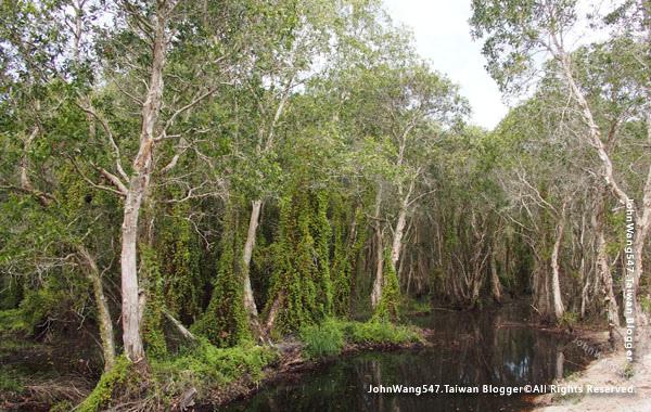 Rayong Wetland sanctuary Samnak Yai6.jpg