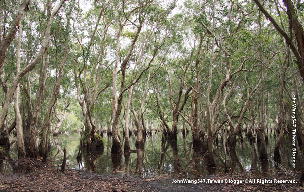 Rayong Wetland sanctuary Samnak Yai7.jpg