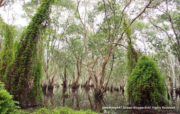 Rayong Wetland sanctuary Samnak Yai9.jpg