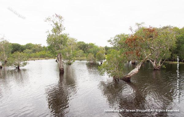 Rayong Wetland sanctuary Samnak Yai13.jpg