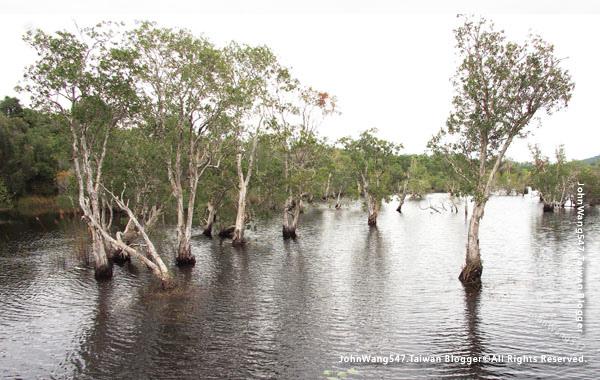 Rayong Wetland sanctuary Samnak Yai14.jpg