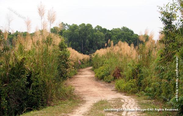 Rayong Wetland sanctuary Samnak Yai18.jpg