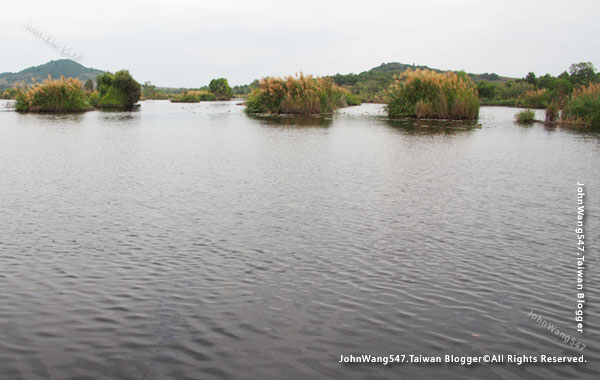 Rayong Wetland sanctuary Samnak Yai19.jpg