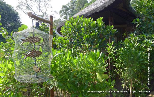 U Pattaya Hotel芭達雅度假村飯店Garden Villas.jpg