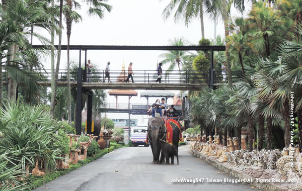 Pattaya Nong Nooch Tropical Garden Elephant ride.jpg