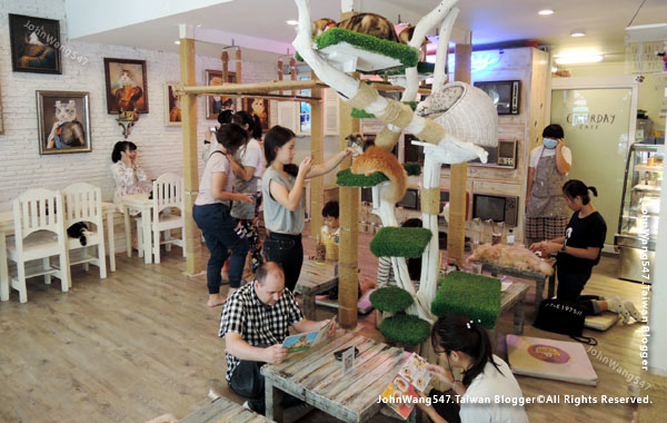 Caturday Cat Cafe BKK BTS Rachathewi1.jpg
