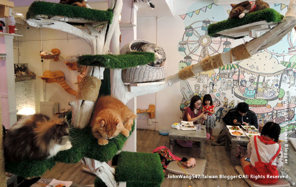 Caturday Cat Cafe Bangkok4.jpg