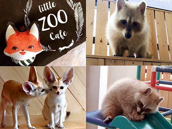 Little zoo cafe Bangkok0.jpg