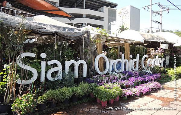Siam orchid center 暹羅蘭花市集1.jpg