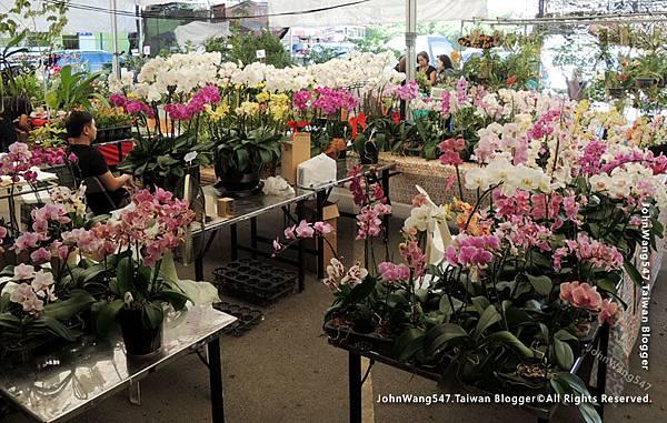 Siam orchid center 暹羅蘭花市集2.jpg