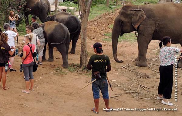 大象與象夫的鉤子.jpg