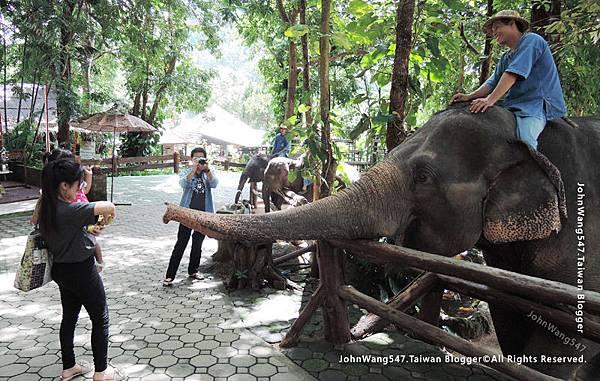 Thai Elephant Conservation Center.jpg
