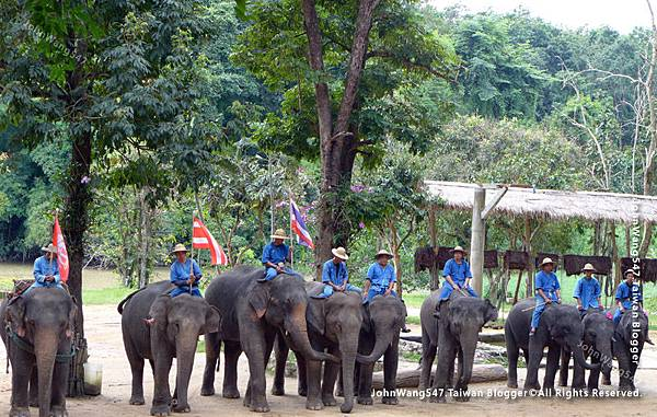 Thai Elephant Conservation Center(TECC)Lampang.jpg
