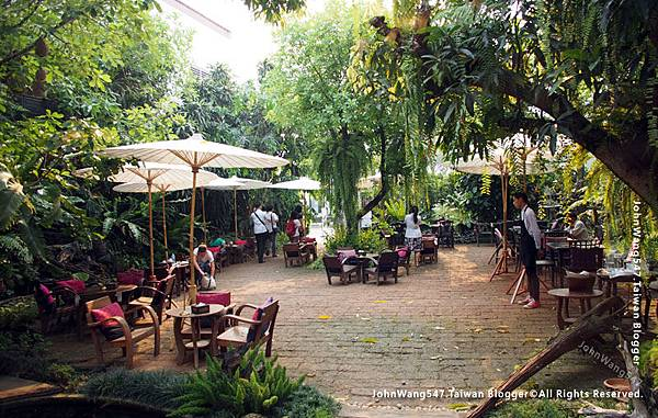 Fern Forest Cafe Chiang Mai.jpg