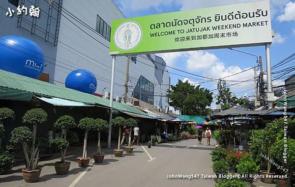 曼谷恰圖恰綠色植物市集3.jpg