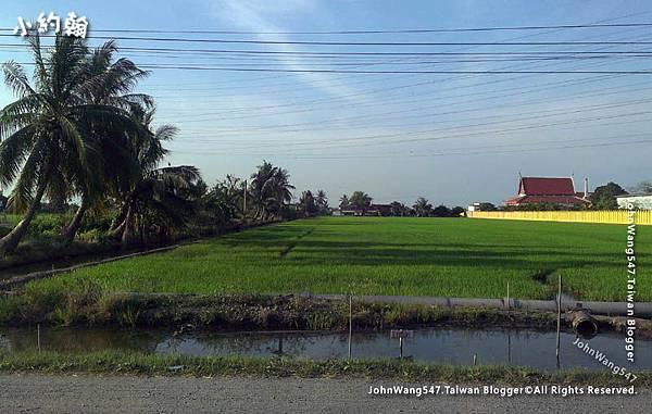 on the way to Wat Saman.jpg