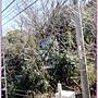 20150326-102304-DSCN6725.JPG