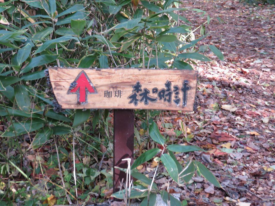 Blog 15 IMG_9158.jpg