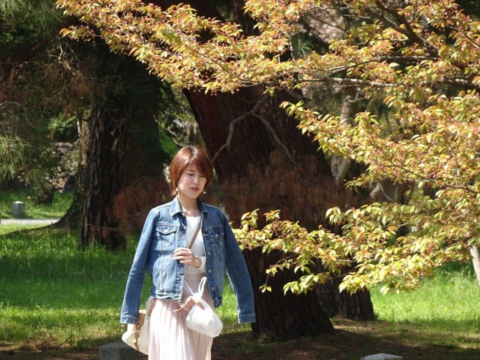 Blog 11 DSC01747.jpg