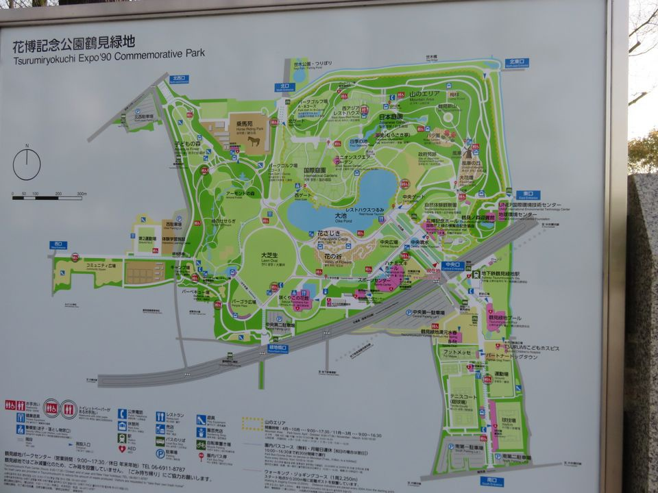 Blog 13 IMG_1037.jpg