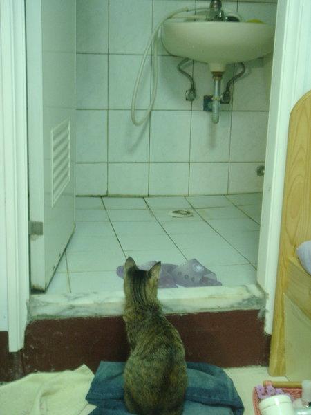 2007.09.24-專業顧廁所2.jpg