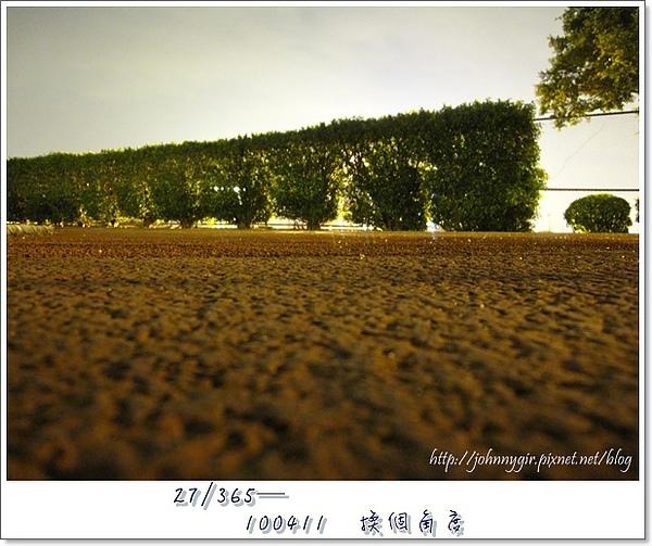 Project 365-1004011.JPG