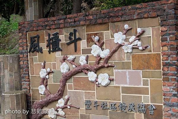 風櫃斗之踏雪尋梅與櫻花片片.jpg