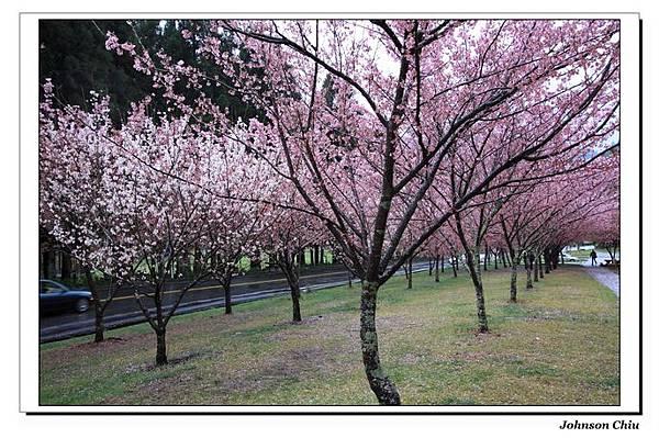 2010_0215_春節東部環島露營080.jpg