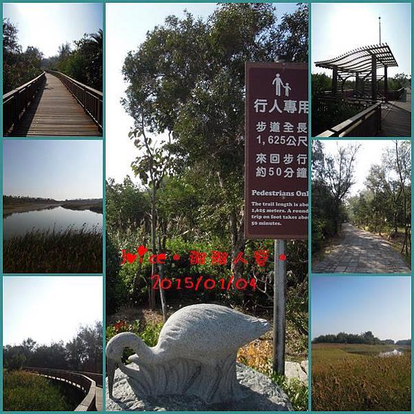 南堤溼地生態體驗步道