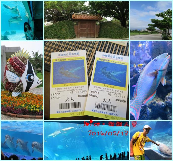 5%2F13 海洋博公園