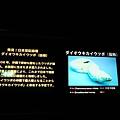 日本初發現的,一種鱔魚