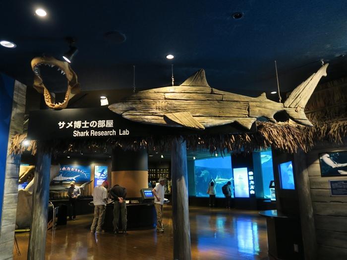鯊魚研究實驗室
