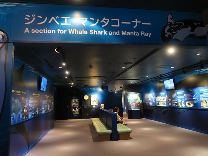 鯨鯊和鬼蝠魟的介紹區