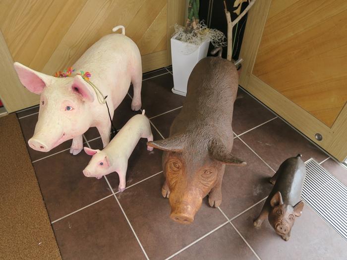 店內的豬擺飾