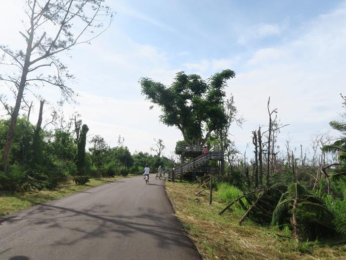 前方就是樹屋(700M)