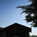 下午的陽光一樣炎熱