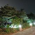 夜晚的道路就只有這些燈