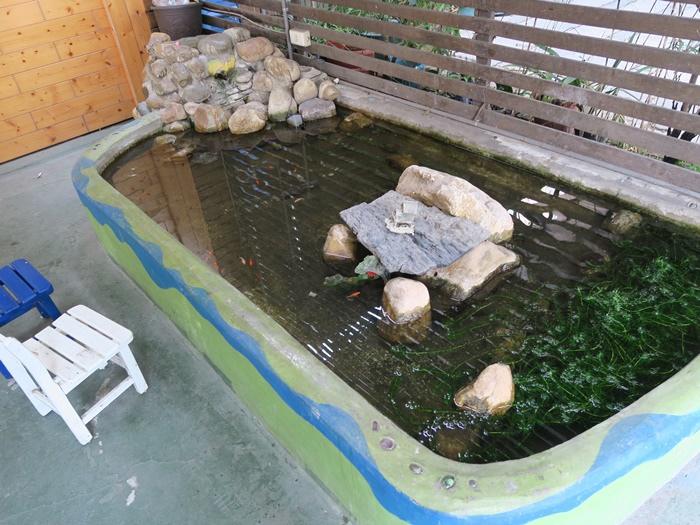 停車區旁的小水池
