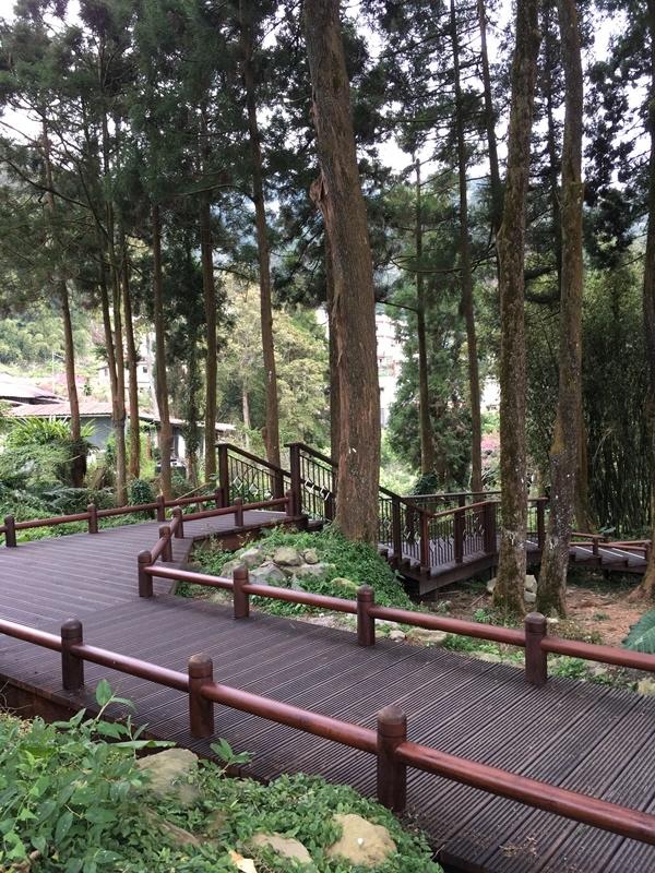 肖楠木步道