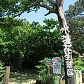 水蓮花生態園區