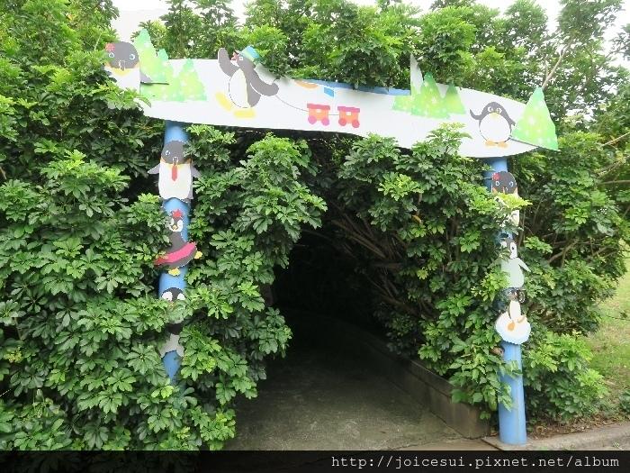 企鵝綠色隧道