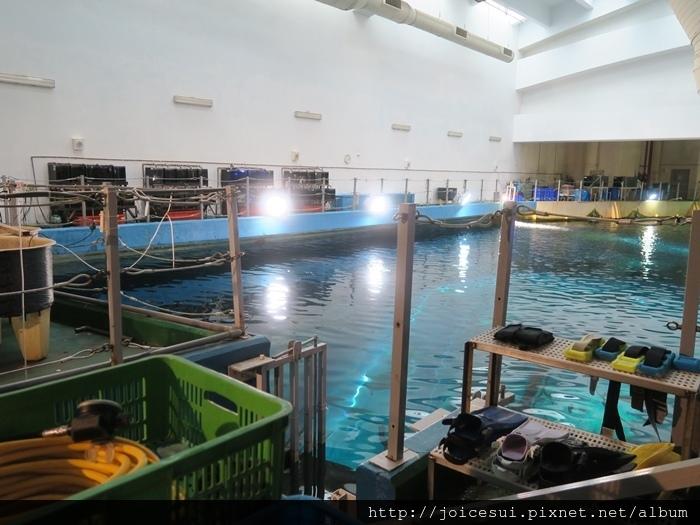 底下就是海底隧道+沉船區