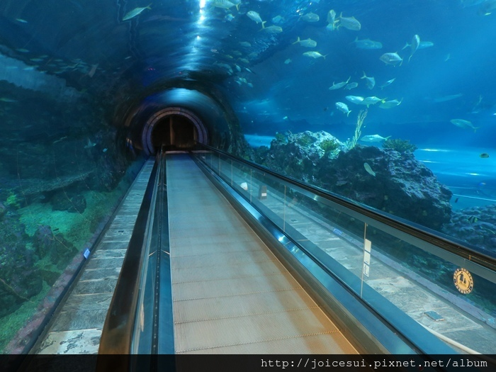 準備進入海底隧道