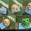 青蛙的一生