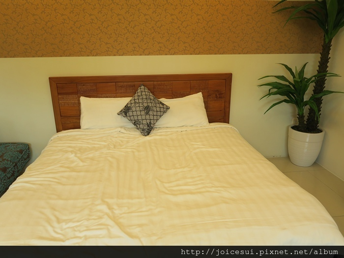 我和田田睡這張床