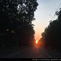 回家路過綠色隧道追夕陽了^^