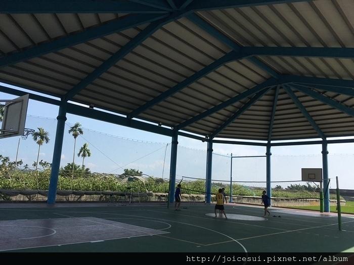 和大學生一起打了排球