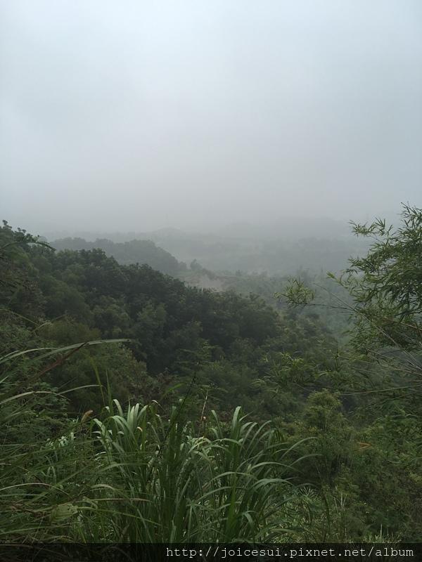 某個小高點,但霧很濃
